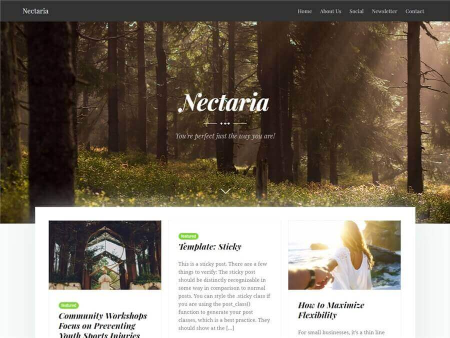 Nectaria Free WordPress Theme