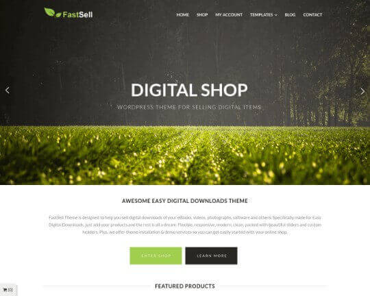 Fastsell WordPress Theme