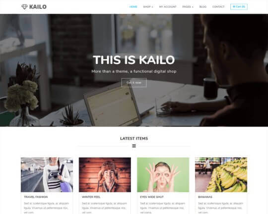 Kailo WordPress Theme