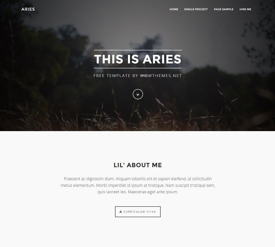 Aries - Free HTML Bootstrap Template