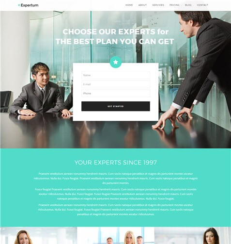 Expertum WordPress Theme